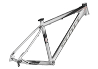 Scale 40 Frame